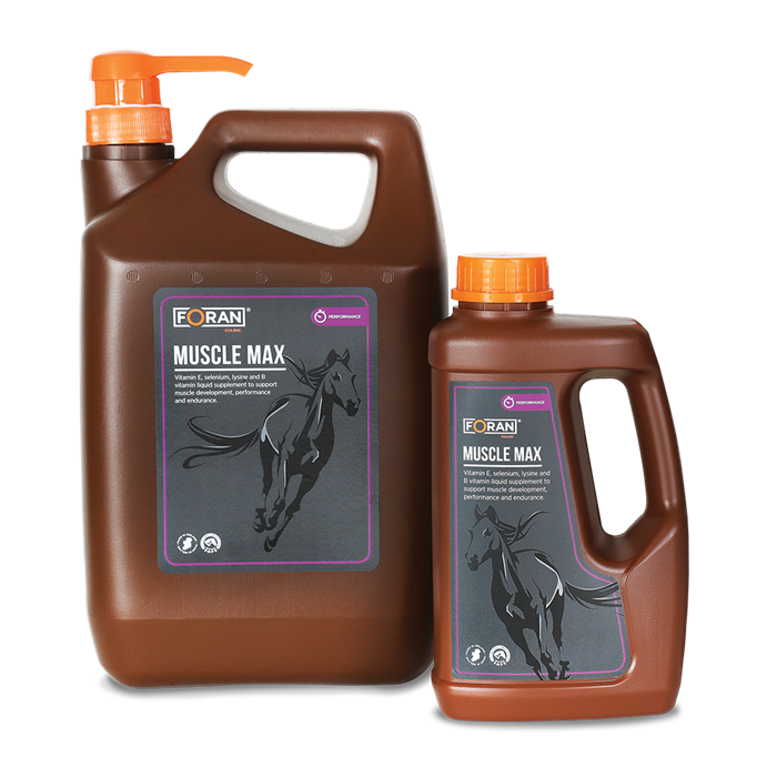 Muscle MAX 2,5 liter